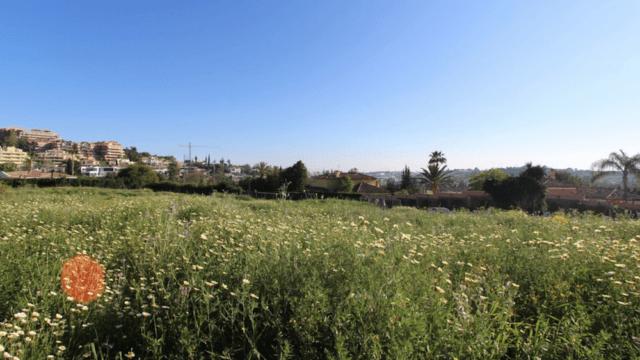 Nueva Andalucia 3800m2 plot for 4 villas