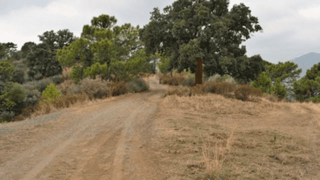 Benahavis Finca with 265,901m2 land for sale,mostly Forest